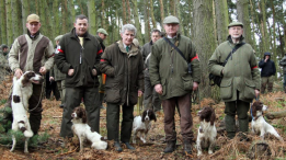Shooting party with dogs